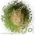 rabbit_good_afternoon